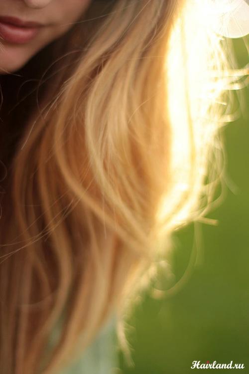 Золотисто пшеничный цвет волос